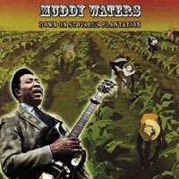 Muddy Waters Down_on_stovall_plantation